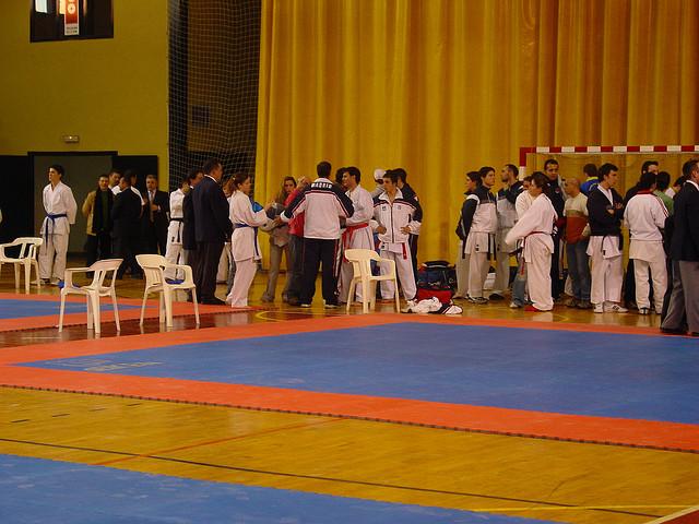Pardoseli pentru sali de sport PAVIGYM - Poza 2