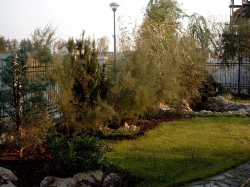 Lucrari de referinta Amenajari de peisagistica, Baneasa Vlad  - Poza 1