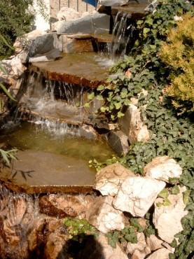 Lucrari de referinta Amenajari de peisagistica, Baneasa Vlad  - Poza 7