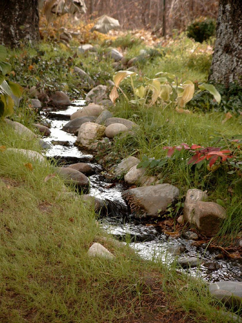 Amenajari de peisagistica, Snagov  - Poza 1