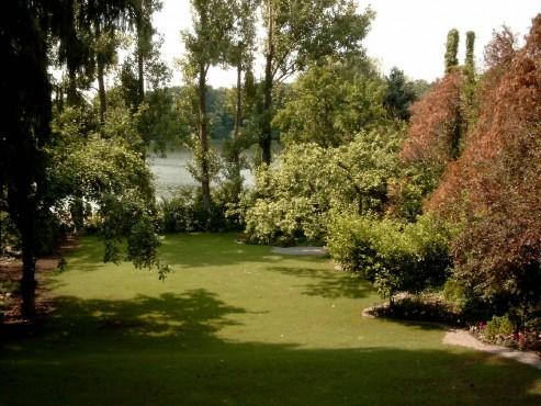 Lucrari de referinta Amenajari de peisagistica, Snagov  - Poza 3