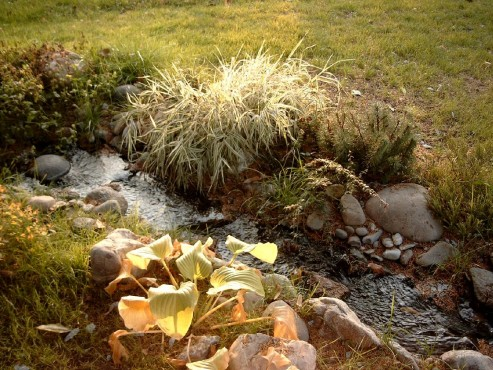 Lucrari de referinta Amenajari de peisagistica, Snagov  - Poza 8