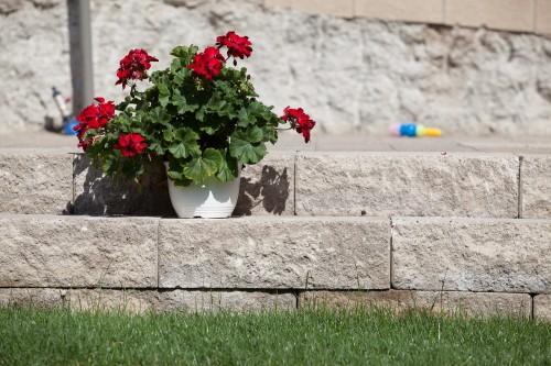 Prezentare produs Elemente decorative din beton ELIS PAVAJE - Poza 12