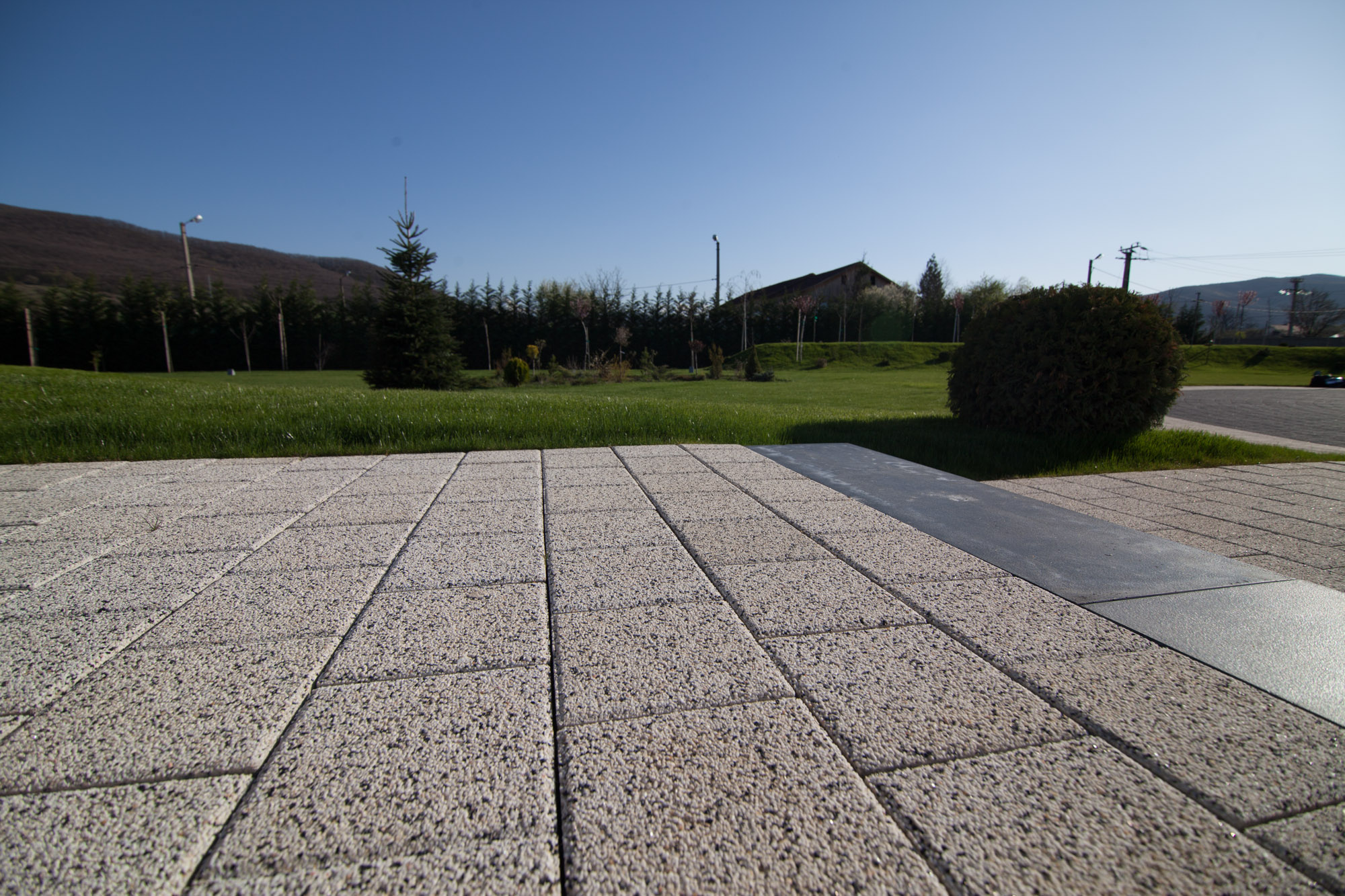 Elemente decorative din beton ELIS PAVAJE - Poza 308