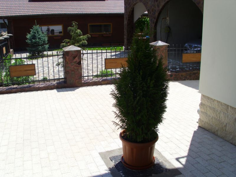 Pavaj rezidential Premium ELIS PAVAJE - Poza 183