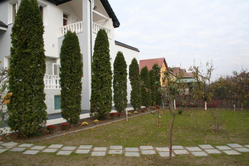 Pavaj rezidential Standard ELIS PAVAJE - Poza 244
