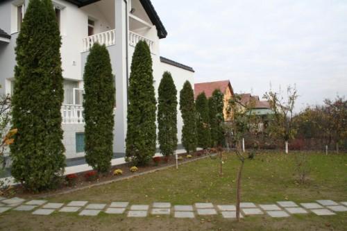 Prezentare produs Pavaj rezidential Standard ELIS PAVAJE - Poza 244