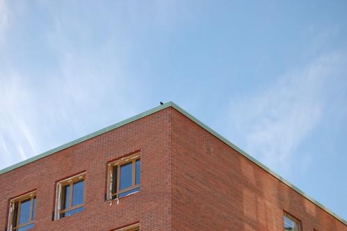 Exemple de utilizare Solutii arhitecturale din cupru AURUBIS - Poza 102