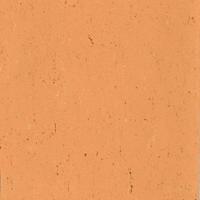 Linoleum ARMSTRONG - Poza 3