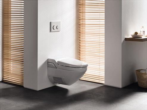 Amenajari camere de baie cu sisteme de WC incastrate GEBERIT - Poza 22