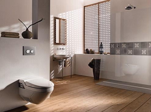 Amenajari camere de baie cu sisteme de WC incastrate GEBERIT - Poza 23