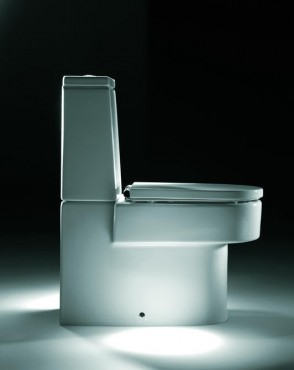 Vase pentru WC ROCA - Poza 4