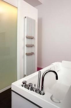 Prezentare produs Calorifere cu elementi verticali din otel JAGA - Poza 6