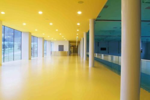 Lucrari, proiecte Pardoseli poliuretanice decorative BASF - Poza 33