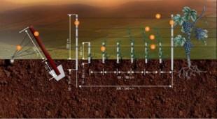 Confectii metalice usoare Sistemul de palisare ''RO-WINE'' fabricat de societatea Metal Work Industry S.R.L. si destinat in special culturilor viticole, intruneste toate  aceste calitati si in plus, aduce un aport de siguranta, prin experienta  producatorului in domeniu. Se monteaza in timp scurt, iar interventiile  la segmentele deteriorate se executa rapid, facil si economic.  Design-ul inovator si calitatea materiei prime (otel zincat), confera  sistemului un comportament optim in exploatare, compatibilitate cu  solul, durabilitate.