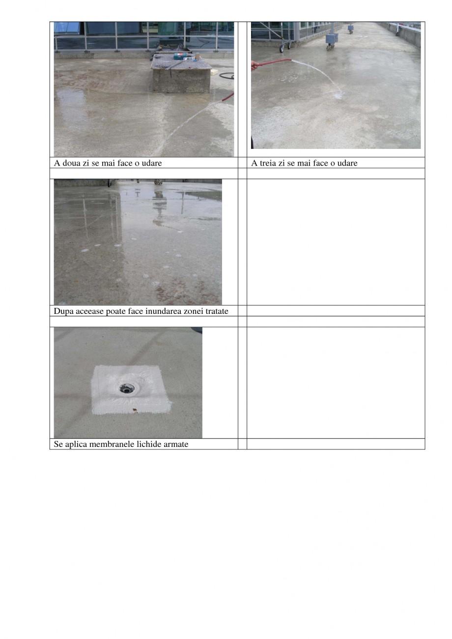 Pagina 3 - Aplicabilitatea produselor UNICO PROFIT RADCON FORMULA #7, RADFLOOR, RADGUARD, RADMYX...