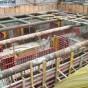 Aditiv in beton - Co-MARK-Co Group - Delea Noua UNICO PROFIT - Poza 7