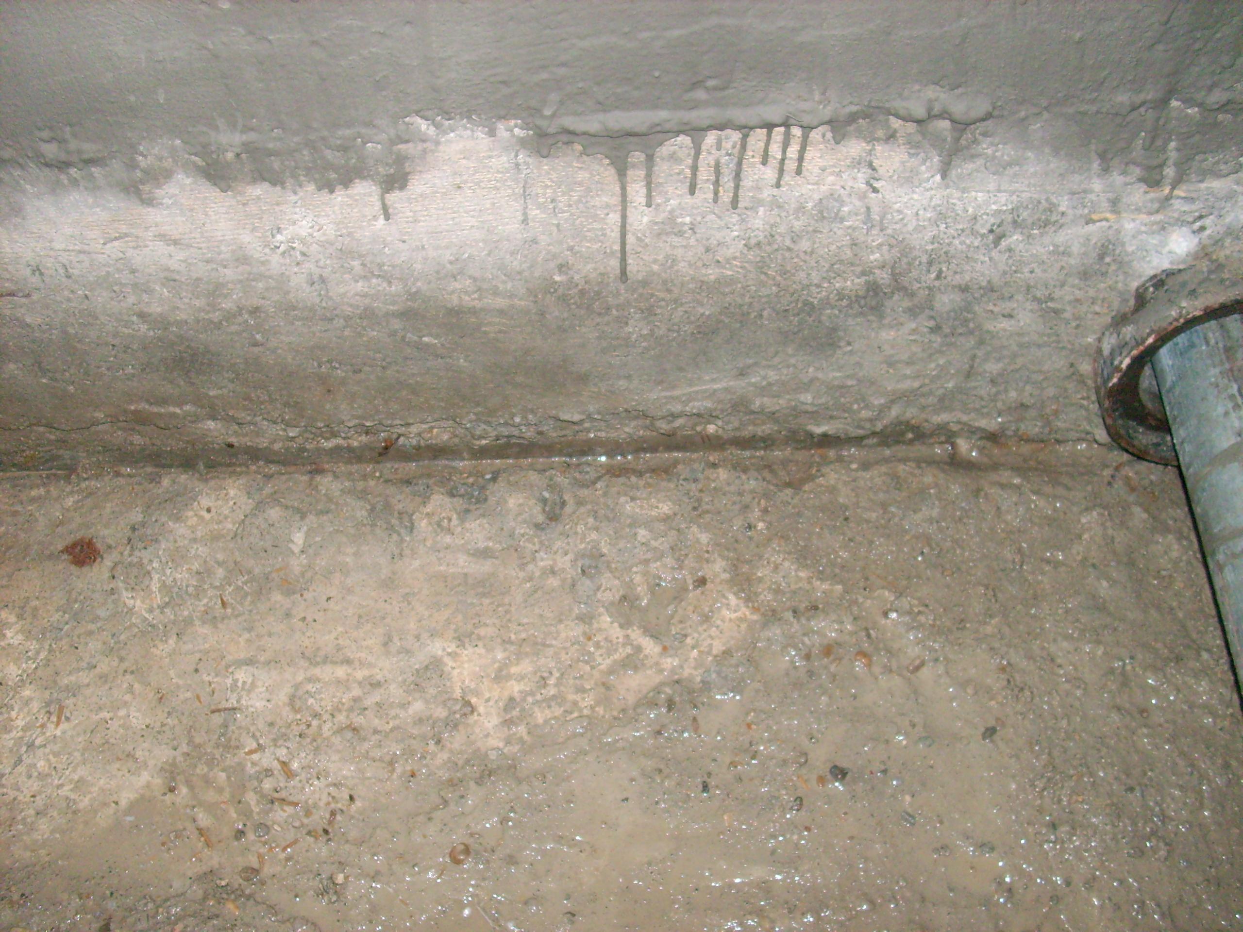 Aplicarea tratamentelor de impermeabilizare - BALCOVI - Bazin apa - Nissan - Tunari UNICO PROFIT - Poza 17