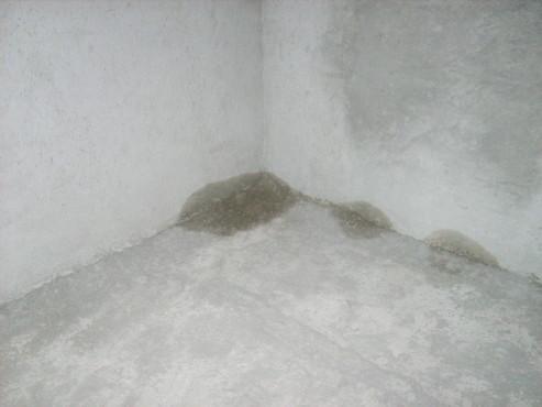 Lucrari, proiecte Aplicarea tratamentelor de impermeabilizare - Vila Rosu UNICO PROFIT - Poza 20