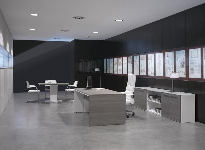 Birouri executive OFIFRAN - Poza 2