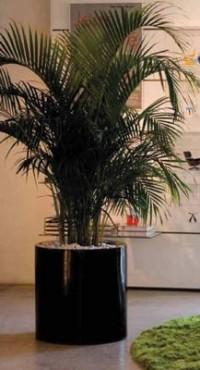 Vase decorative VONDOM - Poza 25
