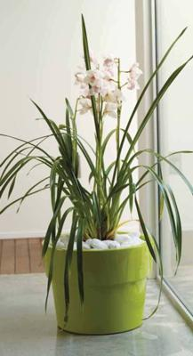 Vase decorative VONDOM - Poza 58
