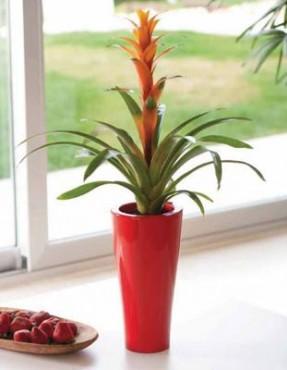Vase decorative VONDOM - Poza 76