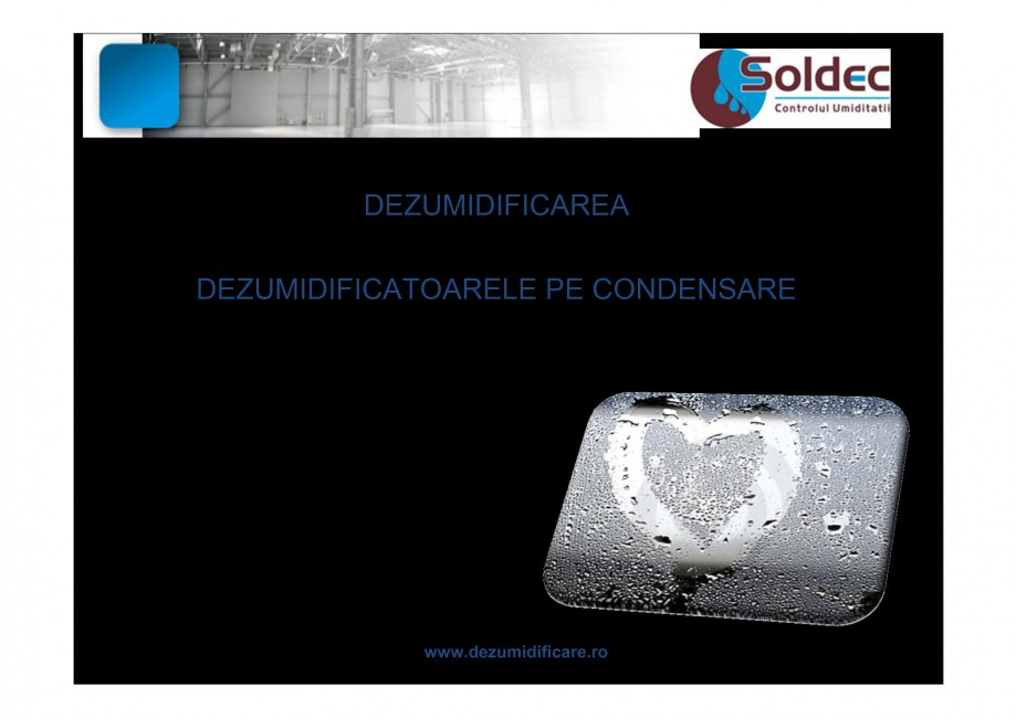 Pagina 8 - Prezentare companie SOLDEC WOODS AUSTRIA Catalog, brosura Romana inodoră    www...