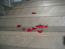 Trepte din lemn BAULAND
