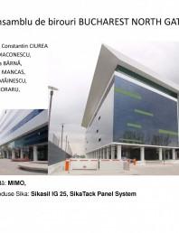 Proiecte de referinta - fatade realizate cu solutii Sika in Romania