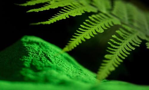 Prezentare produs Colectiile de vopsele pulberi INTERPON - Poza 14