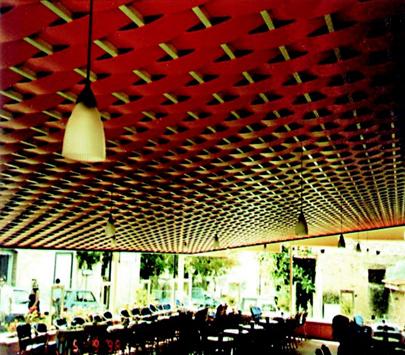 Sisteme de tavane din lamele VERTEBRA - Poza 2