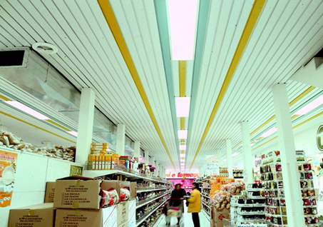 Sisteme de tavane din lamele VERTEBRA - Poza 4