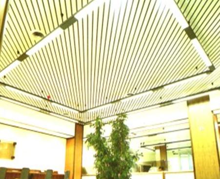 Sisteme de tavane din lamele VERTEBRA - Poza 5