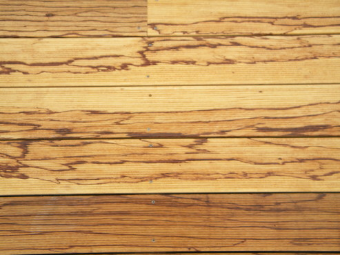Deck-uri lemn - Angelim Rajado SELVA FLOORS - Poza 15