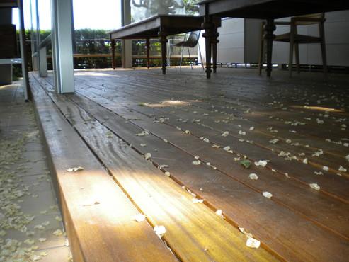 Deck-uri lemn - Bangkirai SELVA FLOORS - Poza 7