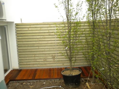 Deck-uri lemn - Sucupira Red SELVA FLOORS - Poza 10