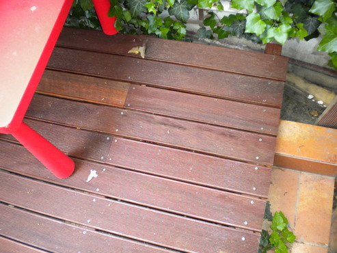 Deck-uri lemn - Uxi SELVA FLOORS - Poza 6