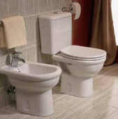 buna ziua, v-as intreba daca in depozitele dv. gasesc un rezervor de wc mondial?
