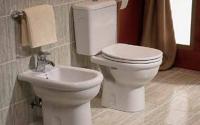 Vase WC si rezervoare Marca Mondial face parte dintre acei producatori care produc closetele cu eficienta ridicata de spalare si cu clatire de 100% a suprafetei vasului a toaletei.
