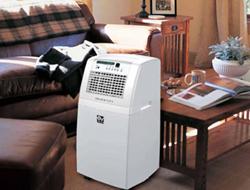 Aparate de aer conditionat portabil tip polar Aparate aer conditionat portabile tip polar: detin  sistemul HEPA - filtrare de inalta eficienta a particulelor cu diametre  de pana la 0,1 microni - elimina polenul, praful, fumul de tigara,  bacteriile sau sporii. Contine filtru de carbon activ incorporat in filtrul HEPA. Realizeaza ionizarea aerului. Regleaza debitul de aer in trei trepte. Modelul 150 TH este echipat cu Timer si roti pentru o deplasare mai usoara. Modelele 45H si 70H pot fi utilizate in pozitie verticala sau orizontala dar si montate pe perete folosind un kit optional.