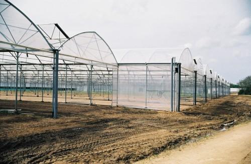 Sere cu deschidere descendenta la peretii frontali MENATWORK AGRICOL - Poza 3