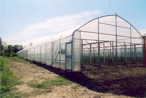 Sere cu deschidere descendenta la peretii frontali MENATWORK AGRICOL - Poza 4