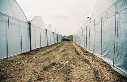 Sere cu deschidere descendenta la peretii frontali MENATWORK AGRICOL - Poza 5