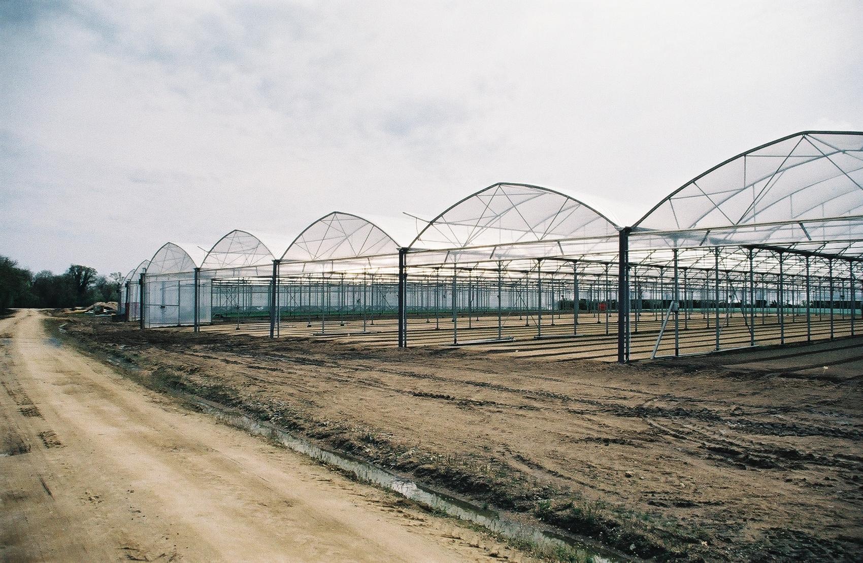 Sere cu deschidere descendenta la peretii frontali MENATWORK AGRICOL - Poza 7