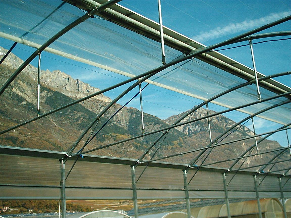 Sere cu deschidere descendenta la peretii laterali MENATWORK AGRICOL - Poza 23