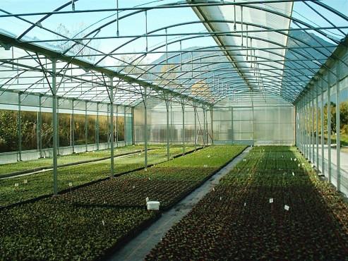 Sere cu deschidere descendenta la peretii laterali MENATWORK AGRICOL - Poza 26