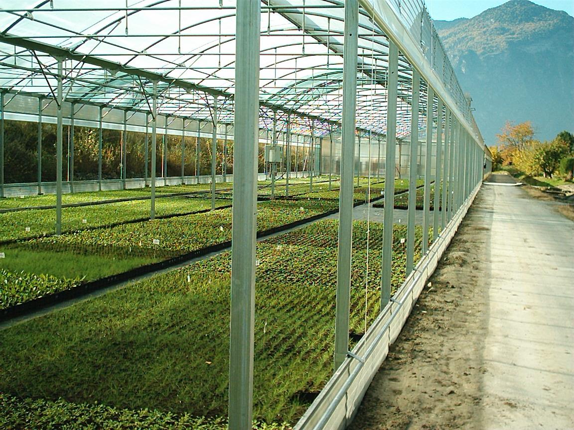 Sere cu deschidere descendenta la peretii laterali MENATWORK AGRICOL - Poza 27