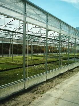 Sere cu deschidere descendenta la peretii laterali MENATWORK AGRICOL - Poza 8