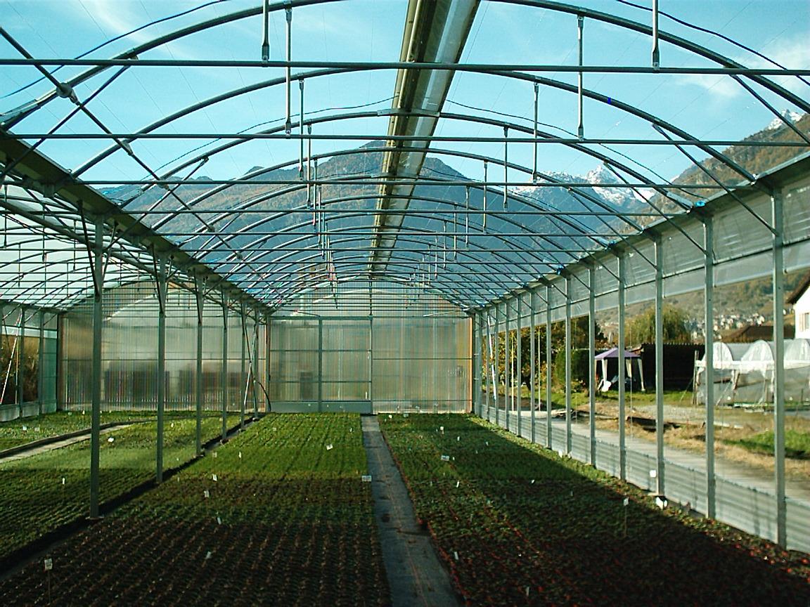 Sere cu deschidere descendenta la peretii laterali MENATWORK AGRICOL - Poza 13